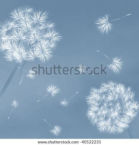 Dandelions in the wind, desktop background - stock photo