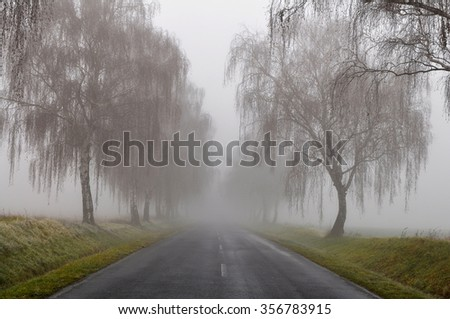 dangerous fog - stock photo
