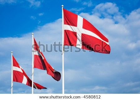Danish Flags - stock photo