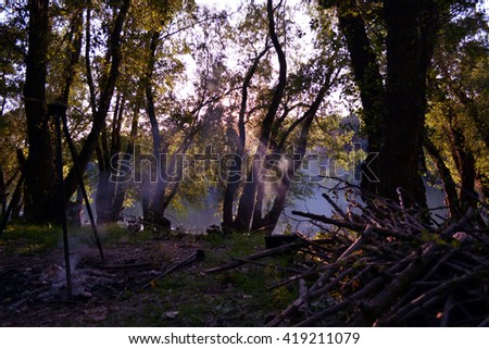 Danube river shore - stock photo