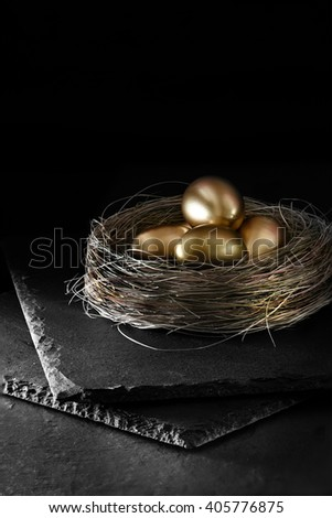 Dark and creatively lit pension nest egg concept image for pensions, savings, investments and unit trusts. Dark background. Generous accommodation for copy space. - stock photo