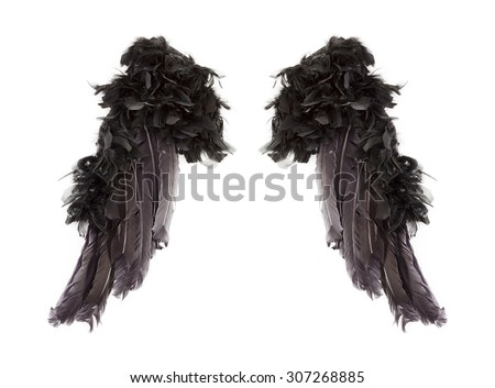Dark angel wings on white background