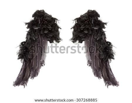 Dark angel wings on white background - stock photo