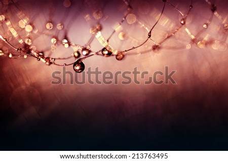 dark background and net with droplets  - stock photo