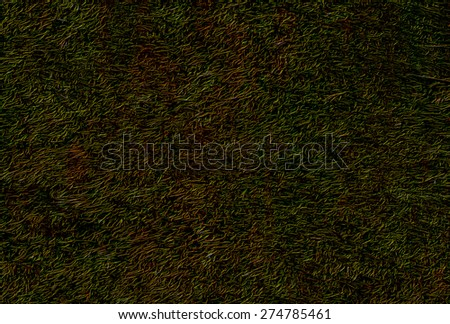 Dark background  with natural texture