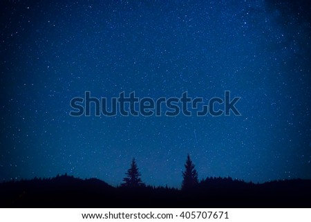 Dark blue night sky above the mistery forest with pine trees - stock photo