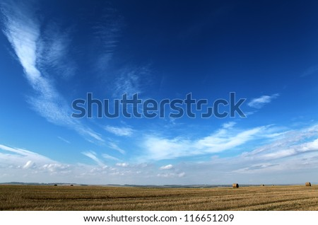dark blue sky and yellow autumn field - stock photo