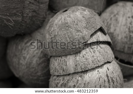 Dark brown Background coconuts shell.