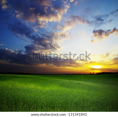 dark clouds over field with grass - stock photo