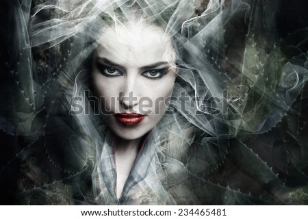 dark fantasy sorceress woman, composite photo - stock photo