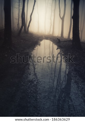 dark forest reflecting in lake water - stock photo