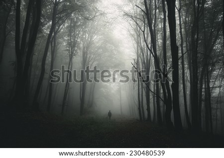 dark forest with man walking on path - stock photo