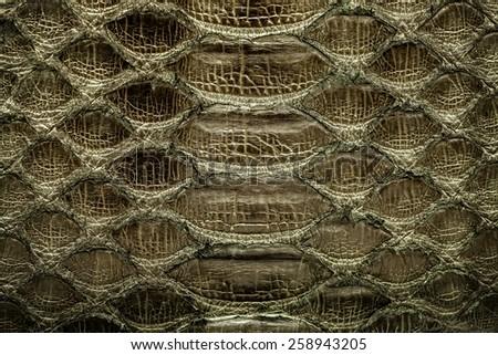 Dark gold  python  leather, skin texture for background. - stock photo