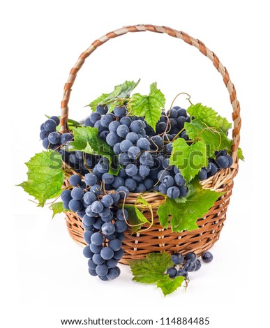Dark grapes with leaves in a wicker basket, Isolated on white background - stock photo