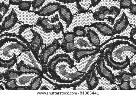 Dark lace with pattern on white background See my portfolio for more - stock photo