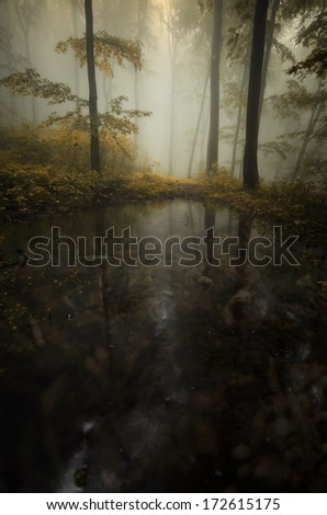 dark lake in forest in autumn - stock photo