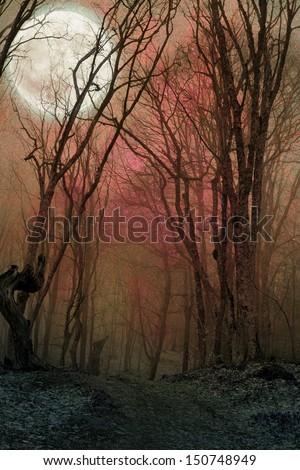 dark night forest against full moon - stock photo