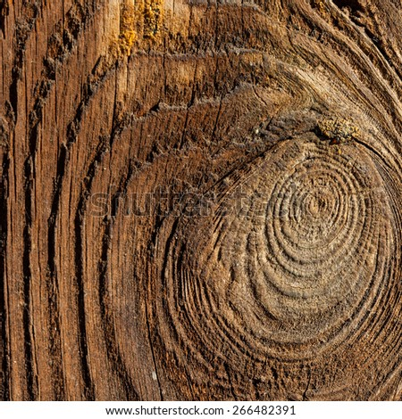 dark old wooden background - stock photo