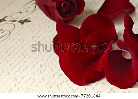 Dark red rose petals scattered on aged background paper with handwriting.  Macro with extremely shallow dof. - stock photo
