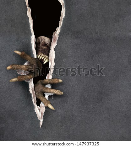 Dark series - paws of a monster tearing a paper - stock photo
