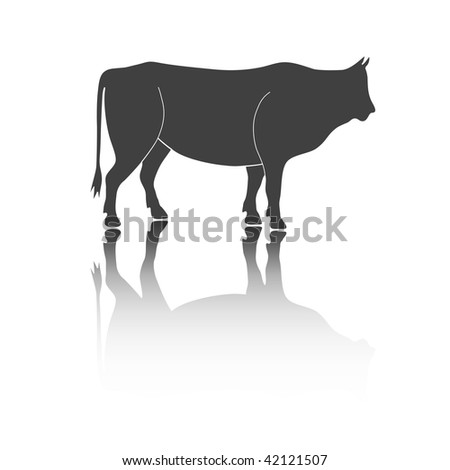 Dark silhouette of the bull with a shadow on a white background