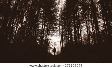 dark sunset landscape with spooky forest and man silhouette - stock photo