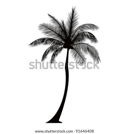 Dark Tall Palm tree silhouette - stock photo