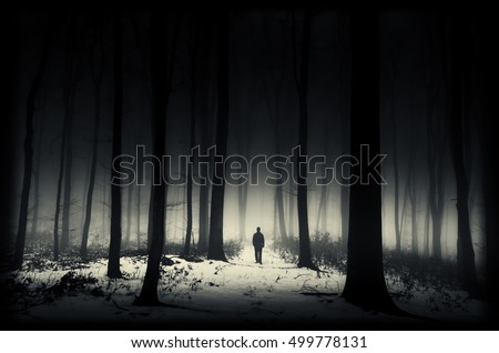 dark winter forest
