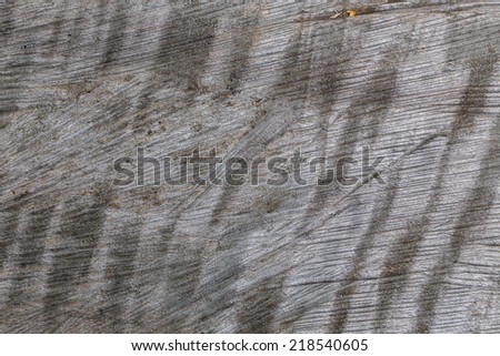 Dark wood texture. Abstract background