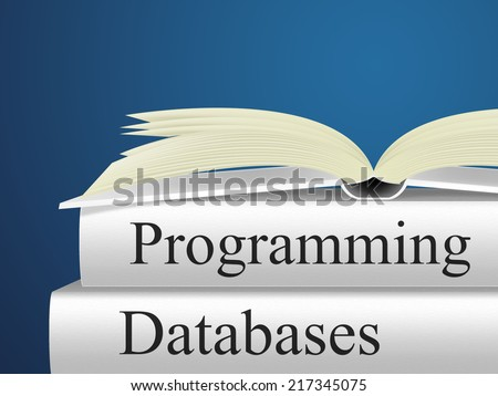 Databases Programming Meaning Software Development And Programmer