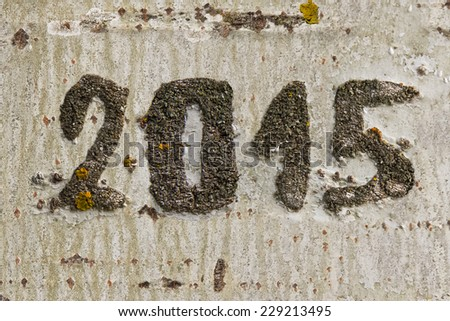 Date of year 2015 engraved on the bark of a tree trunk - stock photo