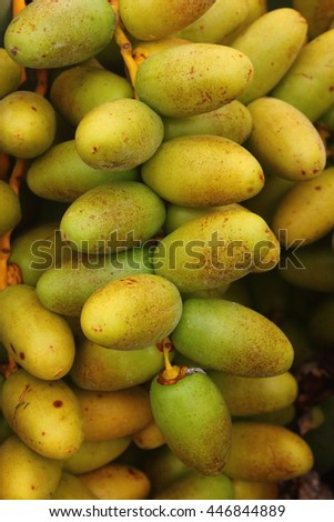 Date palm fruits