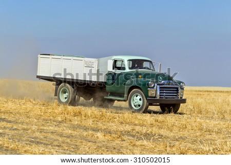 Davenport, WA. USA - Aug 22, 2015. A vintage farm truck in the field near Davenport, Washington during the vintage harvest August 22, 2015. - stock photo