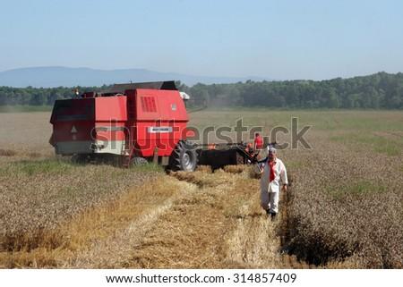 DAVOR, CROATIA - JUNE 26: Combine harvest wheat in Davor, Slavonia, Croatia on June 26, 2010 - stock photo