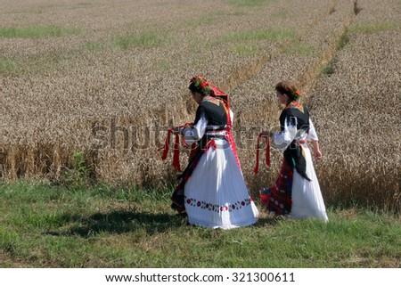 DAVOR, CROATIA - JUNE 26: Women in traditional costumes go into the field to harvest wheat in Davor, Slavonia, Croatia on June 26, 2010 - stock photo