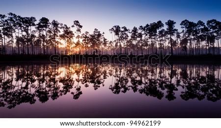 Dawn at Long Pine Key Lake in Everglades National Park near Homestead, Florida - stock photo