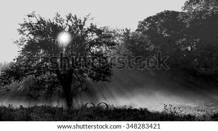 Dawn of a New Day - stock photo