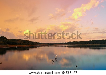 Dawn on a low counry marshy lake with a snowy egret - stock photo