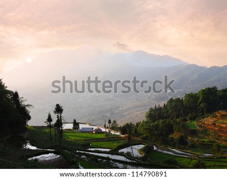 Dawn over the Rice Fields in the Mountains of Yunnan Province, China