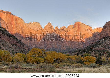 Dawn paints Towers of the Virgin red, competeing with the yellows of the autumn foliage in Zion Canyon National Park.