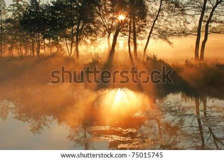 Dawn sun rays pass through the mist on the lake - stock photo