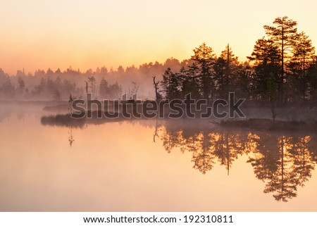 Daybreak light over the lake at the forest - stock photo