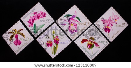 DDR - CIRCA-1968: A stamp printed in DDR shows six kinds of rose flowers,circa 1968 - stock photo