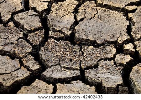dead crannied earth - stock photo