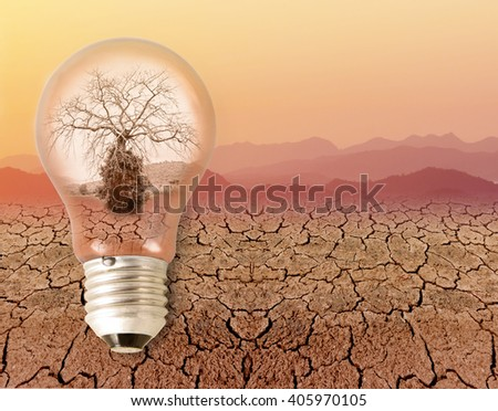 dead dry tree in a light bulb. on drought dry skin and sky orange color in summer. concept and idea relating to the use of energy. - stock photo