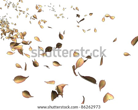 Dead leaves flying in the wind on a white background, referring to concepts such as nature, seasons, wind, liberty, as well as change - stock photo
