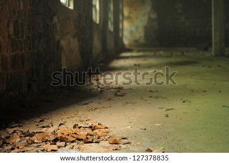 Dead leaves on old concrete fool illuminated by light comming from side windows. ancient, abandoned house. - stock photo