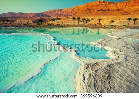Dead sea salty shore  - stock photo