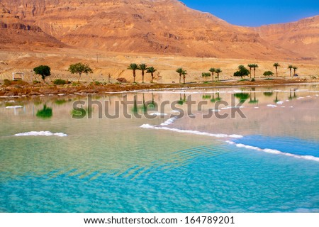 Dead Sea seashore with palm trees and mountains on background - stock photo