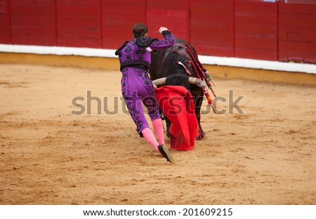 Dead third. Moment when the bullfighter kills a bull with the sword